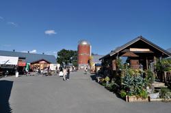 酪農体験むらかみ牧場