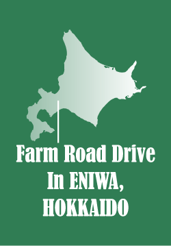 Farm Road Drive In Eniwa